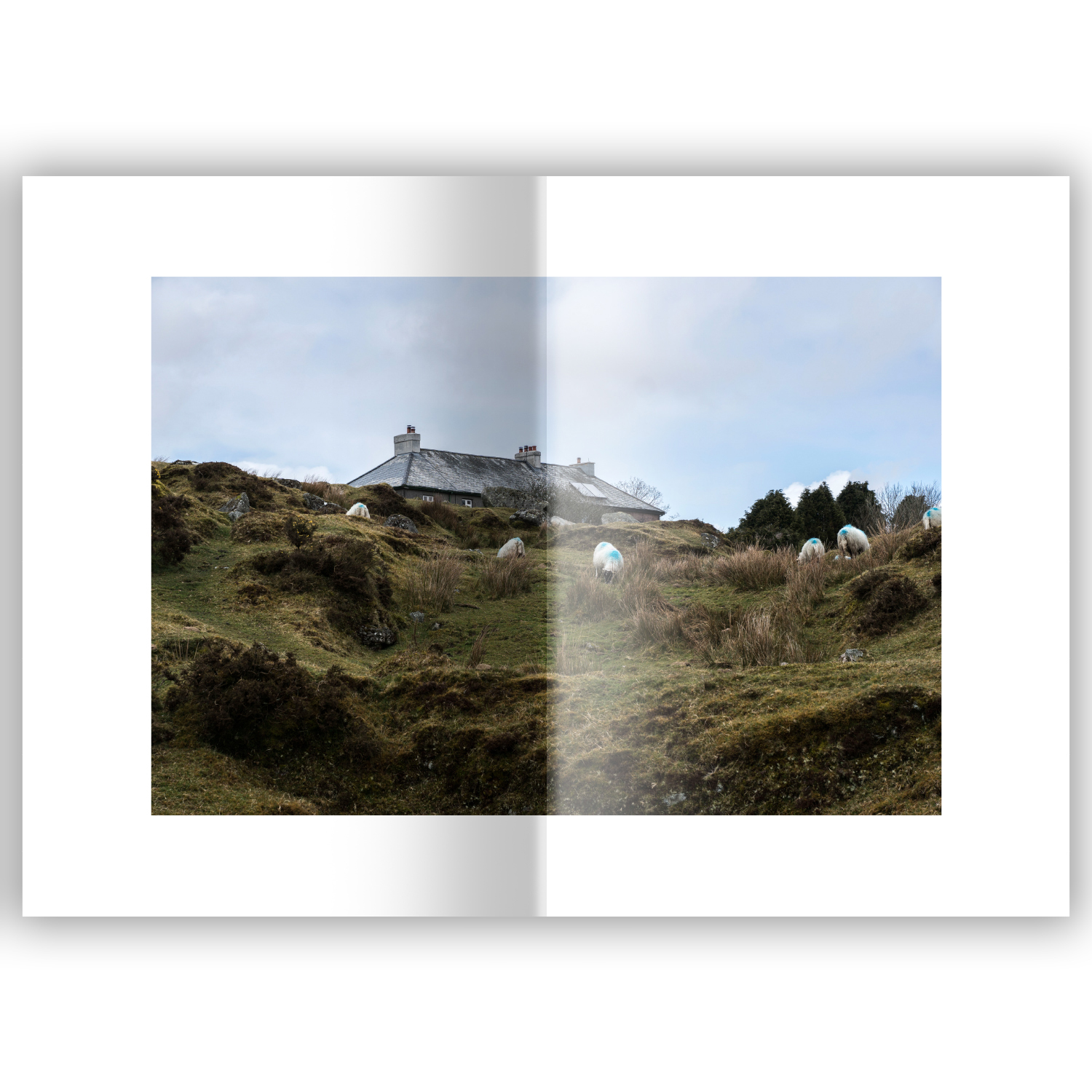dartmoor a visual essay jonathan crabtree imagery